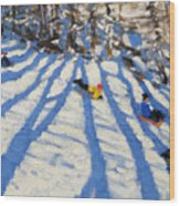 Tree Shadows Morzine Wood Print by Andrew Macara