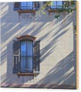 Tree Shadows On Savannah House Wood Print