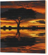 Tree Silhouette And Dramatic Sunset Wood Print