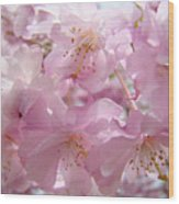 Tree Spring Pink Flower Blossoms Art Print Baslee Troutman Wood Print