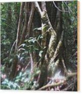 Tree Sprites Wood Print