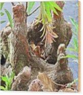 Tree Stalactites Wood Print