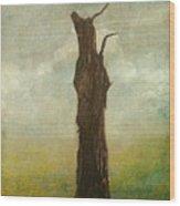 Tree Stilllife Wood Print