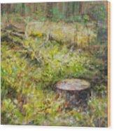 Tree Stump In Vikersund Wood Print