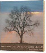 Tree - Sunset - Quotation Wood Print