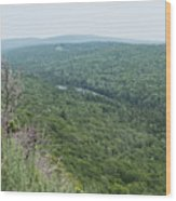 Tree Top Valley Wood Print