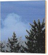 Tree Tops 1 Wood Print
