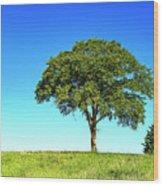 Tree Two One... Wood Print