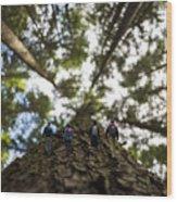 Tree Walkers Wood Print