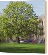 Tree With Animated Surroundings Wood Print