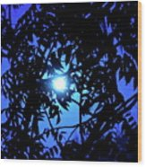 Treed Moon Wood Print