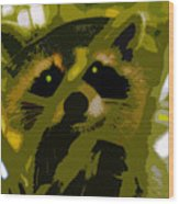 Treed Raccoon Wood Print