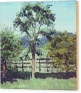 Treeo In The Paddock Wood Print