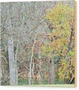 Trees 024 Wood Print
