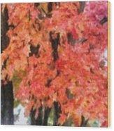 Trees Aflame Wood Print