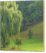 Trees Along Hill Wood Print