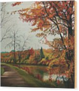 Trees Along The Canal Wood Print