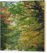 Trees Along The Flumes Trail Wood Print