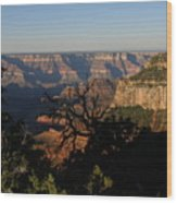 Trees And Canyon Wood Print
