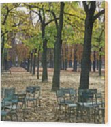 Trees And Empty Chairs In Autumn Wood Print