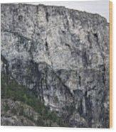 Trees And Flat Peak Wood Print