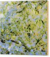 Trees And Leaves Wood Print