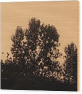 Trees And Geese In Sepia Tone Wood Print