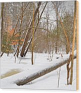 Trees And Snow Wood Print