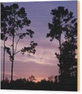 Trees And Sunset Wood Print