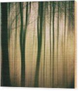 Trees At Dawn Wood Print