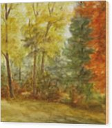Trees At Fall Wood Print