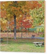 Trees Begins Autumn Color Wood Print