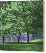 Trees By A Pond Wood Print