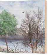 Trees By The Lake Wood Print