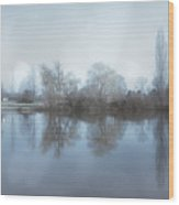 Trees By The River Wood Print