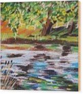 Trees Edge The Pond Wood Print
