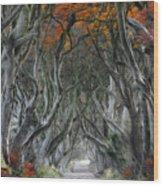Trees Embracing Wood Print