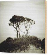Trees Extreme Wood Print