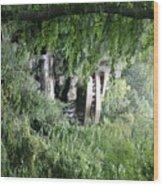 Trees Fallingwater  Wood Print