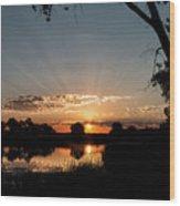 Trees Frame A Great Plains Sunrise Wood Print