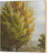 Trees In Boulder Wood Print