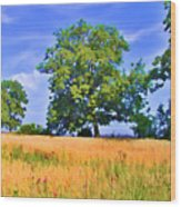 Trees In Field Wood Print