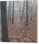 Trees In Foggy Fall Woods Wood Print