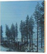 Trees In Northwest Wood Print