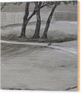 Trees In The Park Wood Print