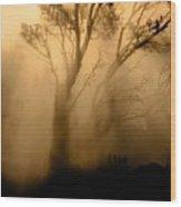 Steaming Trees Wood Print