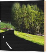 Trees In Upper Austria Wood Print