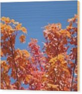 Trees Landscape Art Print Fall Tree Leaves Baslee Troutman Wood Print