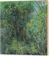 Trees Of Kokee Wood Print
