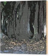 Trees Of The Banyan Wood Print